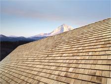 Cedar Roof Care