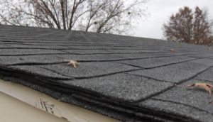 Multiple layers of roofing