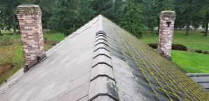 Highest Rated Roof Moss Removal Near Me